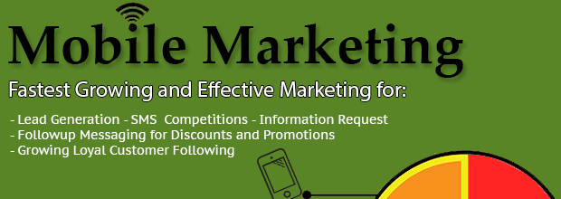 SMS Marketing Software Service